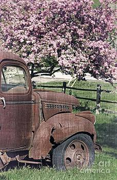 Edward Fielding - The Old Truck and the Crab Apple