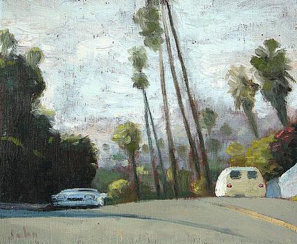 Sleep In The  Van by John Matthew