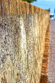 Sandra Pena de Ortiz - The Old Wall of San Juan