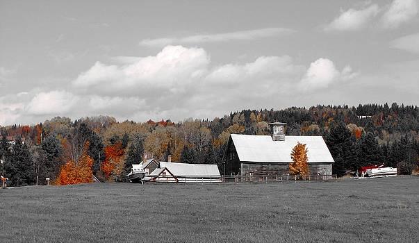 The Ole Flanders Farm by Jeanne LeMieux