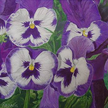 The Pansy Brothers by Harvey Rogosin