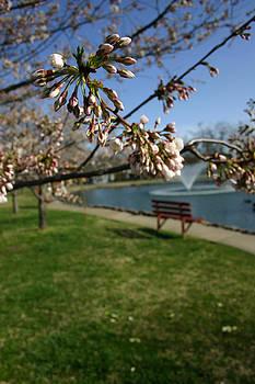 Nina Fosdick - The Park in Spring