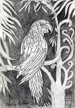 The Parrot by Marlene Robbins