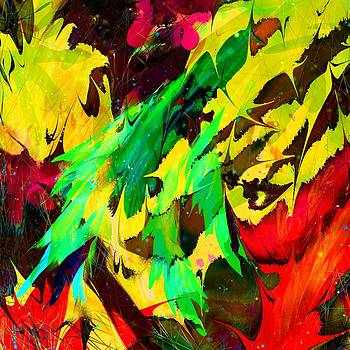 The Parrots Dream by Rachel Christine Nowicki
