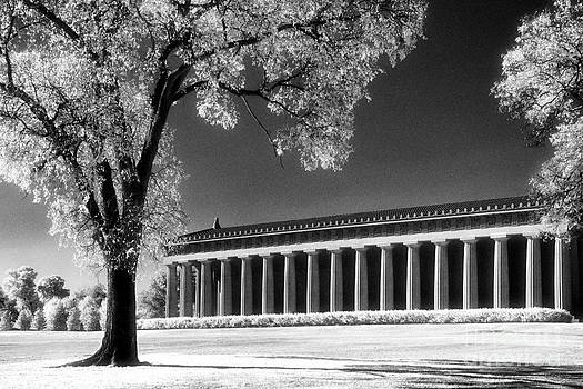 The Parthenon by Jeff Holbrook