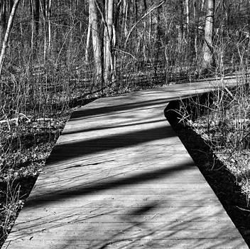 The Path by Amanda Leigh