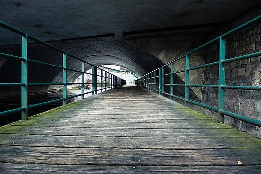 The path by Pedro Nunez