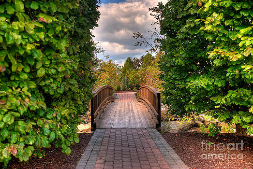 Mark Dodd - The Path to the Garden