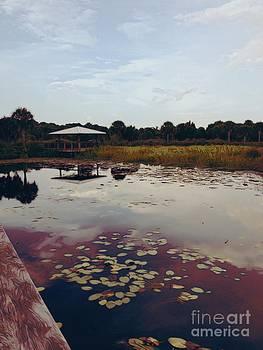 The Pavilion 2 by K Simmons Luna