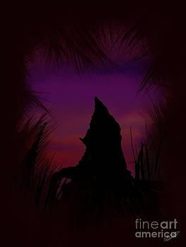 The Peak by Shane B