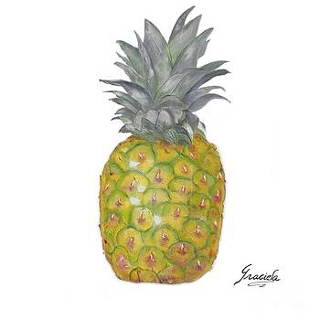 The Pineapple on white by Graciela Castro