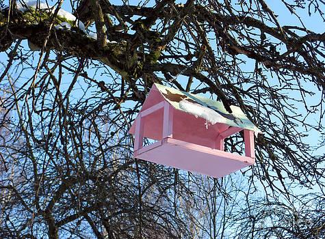The Pink Bird Feeder by Ausra Huntington nee Paulauskaite