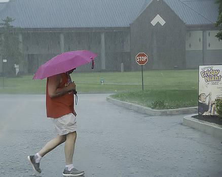 The Pink Umbrella by Joseph Duba