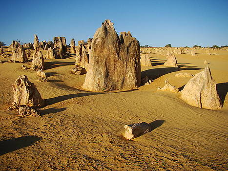 Qing Yang - The Pinnacles in Australia