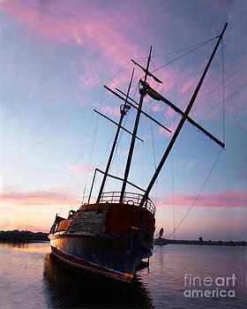 Barbara McMahon - The Pirate Ship