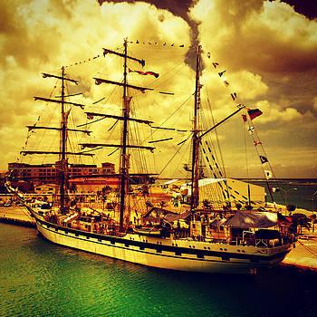 The Pirate Ship by Barry Shereshevsky