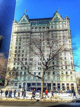 The Plaza Hotel by Debbi Granruth