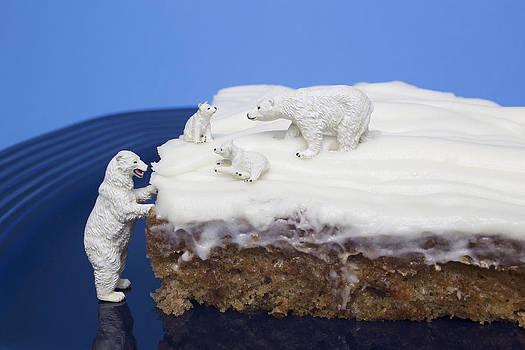 The Polar Bear Family by Tony Sullivan