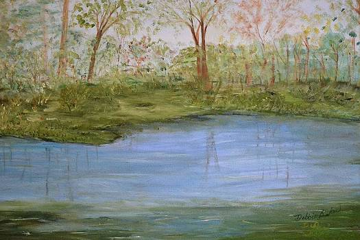 The Pond by Debbie Baker