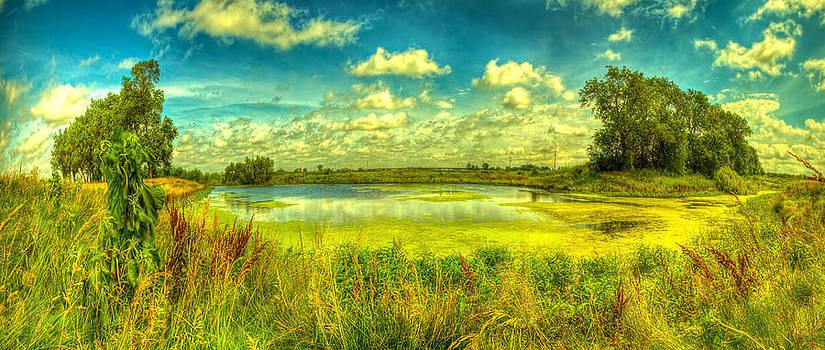 The pond of abundance by  Caleb McGinn