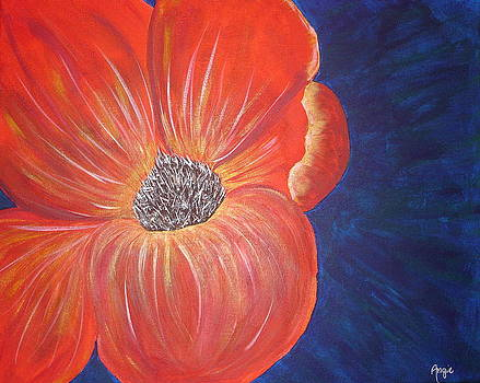 The Poppy by Angie Butler
