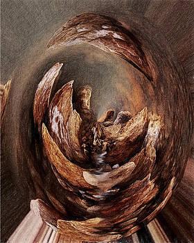 Siyavush Mammadov - The portal