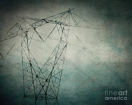 The Power of Line by Sharon Kalstek-Coty