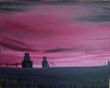 The Prairie by Tony  DeMerchant