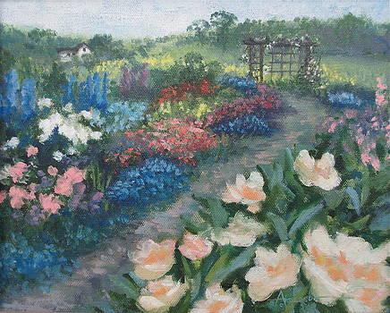 The Primrose Path by Sherri Anderson