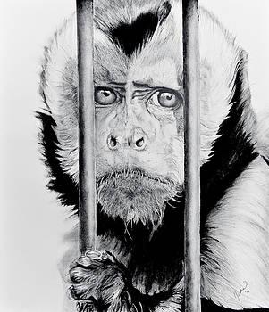 The prisoner by Jesska Hoff