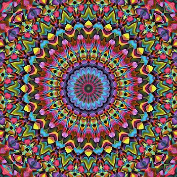 The Psychedelic Days by Lyle Hatch