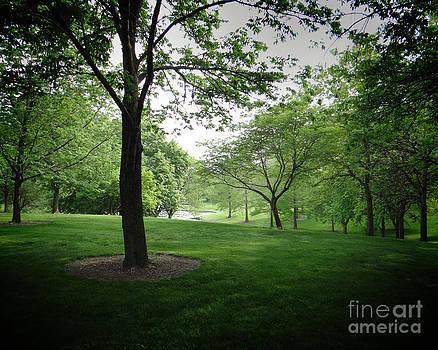 Bedros Awak - The Quiet Park