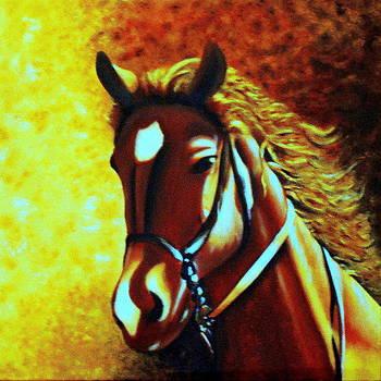 The race horse  by Premkumar C N