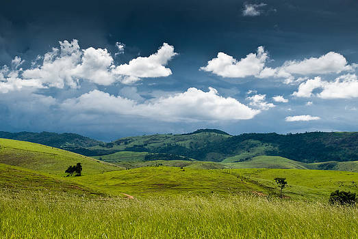 Fields in Valenca - Brazil by Igor Alecsander