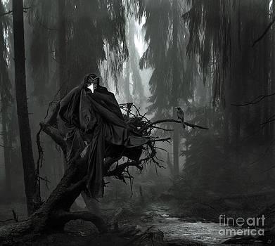 The Raven by Lynn Jackson