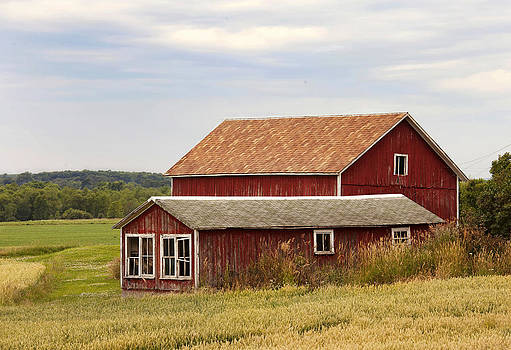 The Red Barn by Laura Greene