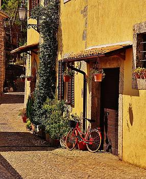 The Red Bicycle by Dany Lison