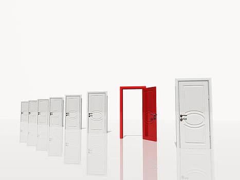 The red door by Bruce Rolff