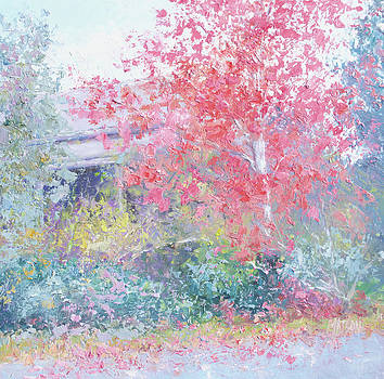 Jan Matson - The Red Japanese Maple Tree