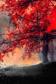 The Red Tree II by Neil Hemsley
