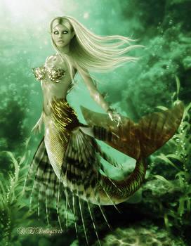 The Reef Siren by Rachel Dudley