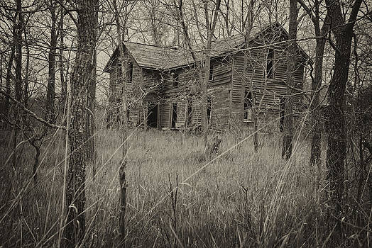 Mary Lee Dereske - The House in the Woods