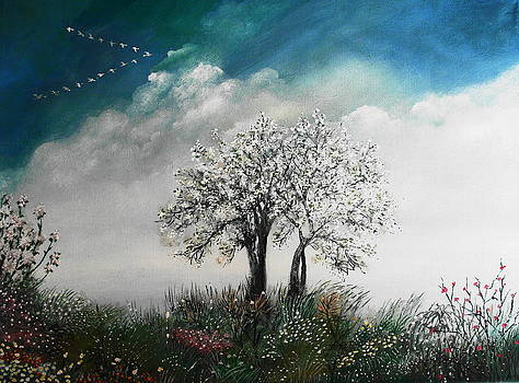 The return by Milenka Delic