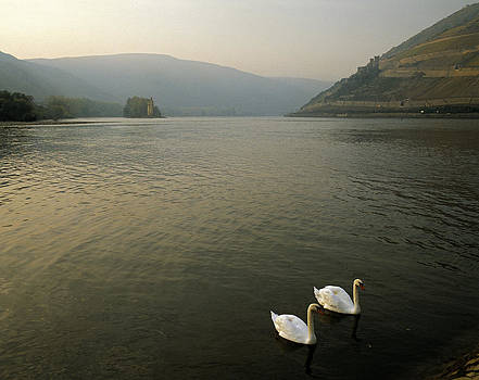 The Rhine near Bingen Germany by David Davies