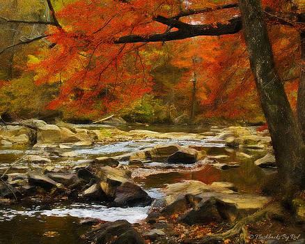 The River Rocks by Melody McBride