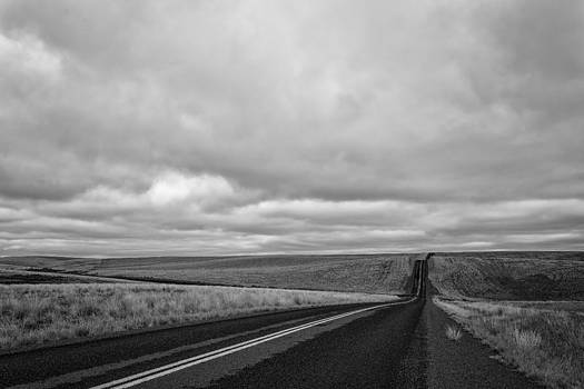 The Road by David Williams