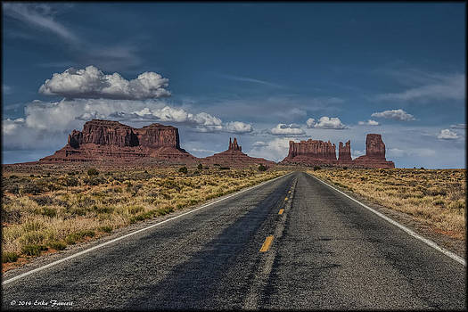 Erika Fawcett - The Road less taken