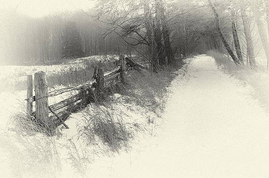 The Road Less traveled By by Alan Norsworthy