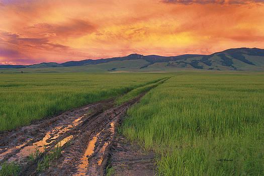 Scott Wheeler - The Road Less Traveled