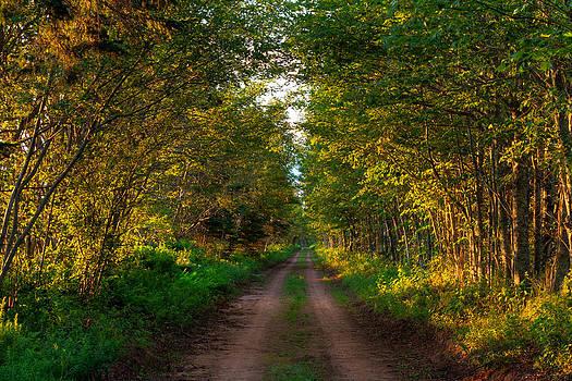 Matt Dobson - The Road Less Travelled